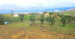 أرض إعمار في يلوا 556م2